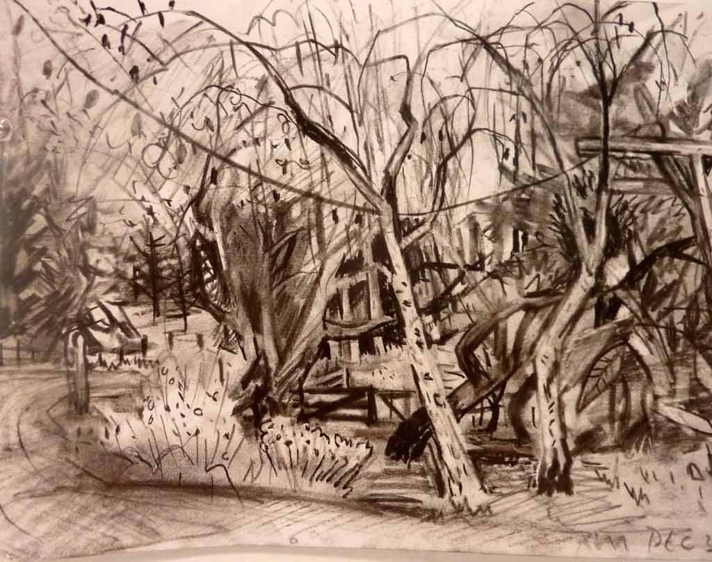Backyard Sketch, 2013